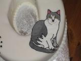 60th birthday cake cats3
