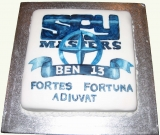 spy-masters-cake
